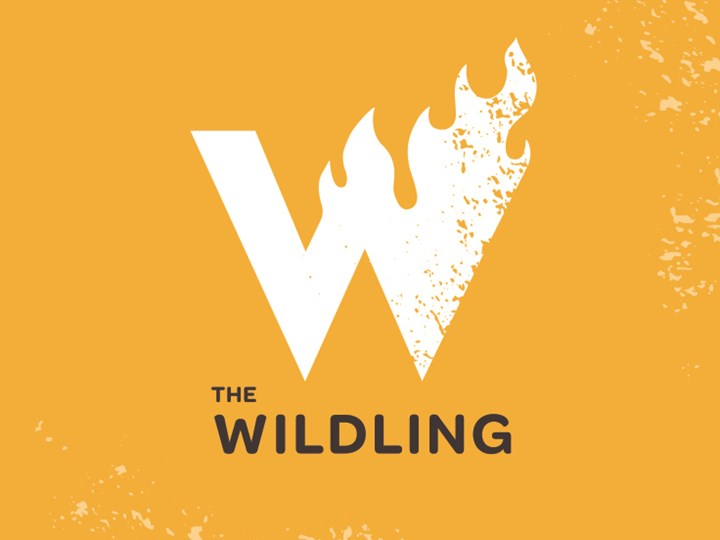 Wildling: A Wildly Fun Live Storytelling Workshop {for Grades 5-8}